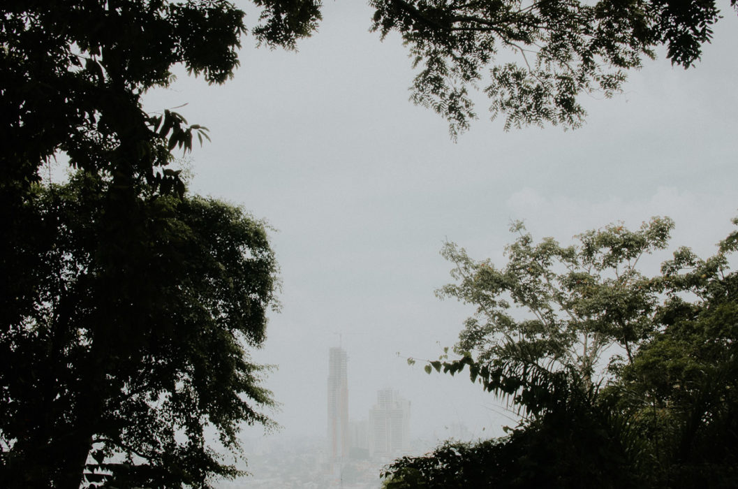 Panama city skyline through tropical forest Camino Cruces National Park