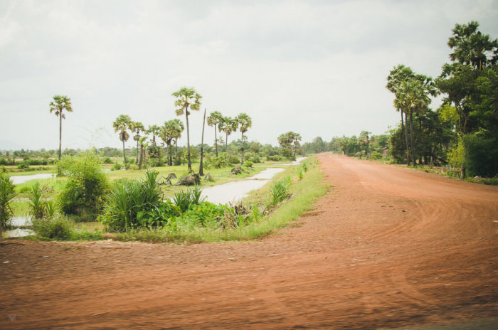 Dusty red road to Siem Reap in Cambodia taken by Milie Del