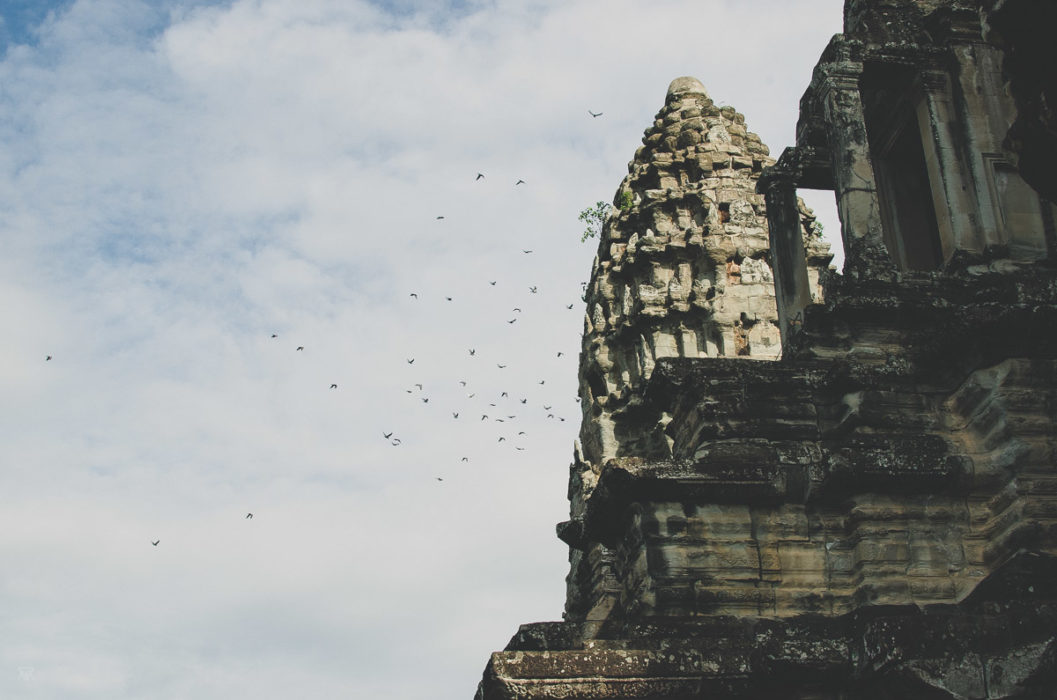 flying birds and angkor vat in Cambodia taken by Milie Del