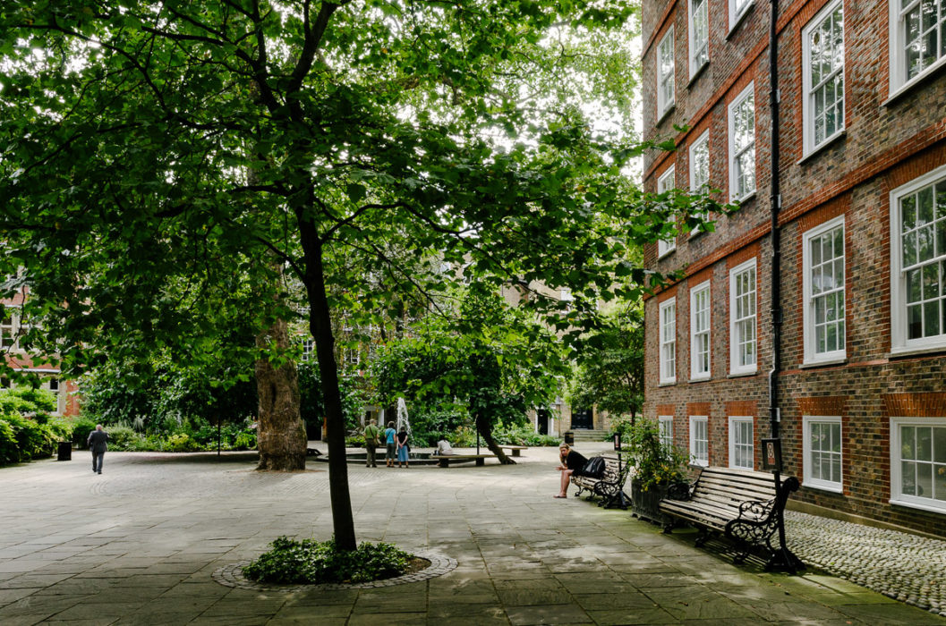 benchs and trees - Inns of courts london - taken by Milie Del