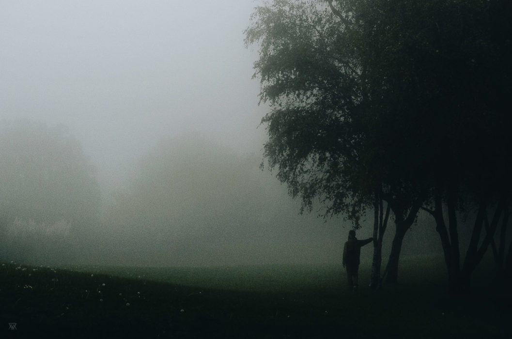 Looking back, stranger mists, Milie Del, human and a tree in the fog in tuscany, italy