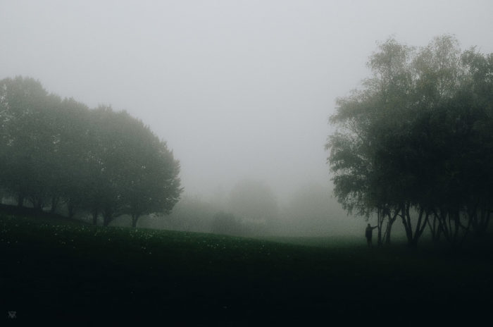 The meadow, stranger mists, Milie Del, human and a tree in the fog in tuscany, italy