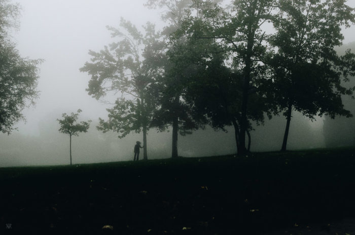 Leaning on a tree, stranger mists, Milie Del, human and a tree in the fog in tuscany, italy