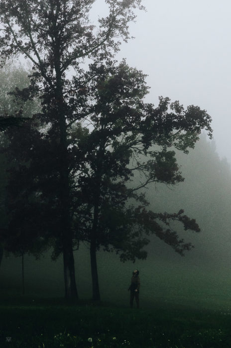 Asking questions, stranger mists, Milie Del, human and a tree in the fog in tuscany, italy
