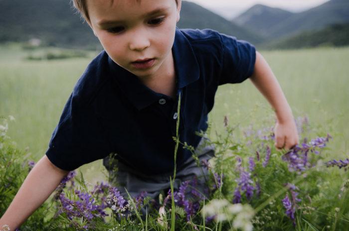 Petit garçon fleurs sauvages session shooting famille Drôme