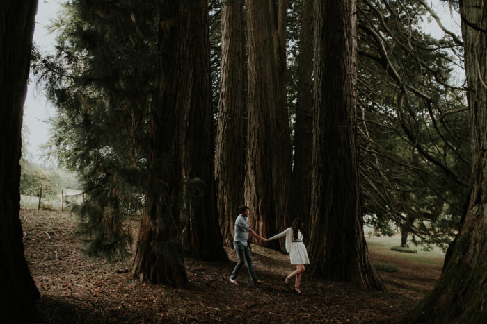 lovers sequoias forest couple engagement photographer