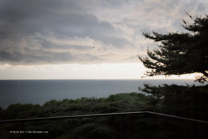 Landscape photography Reportage Pierre Soulages house for Monopol Magazin by Milie Del Photographer