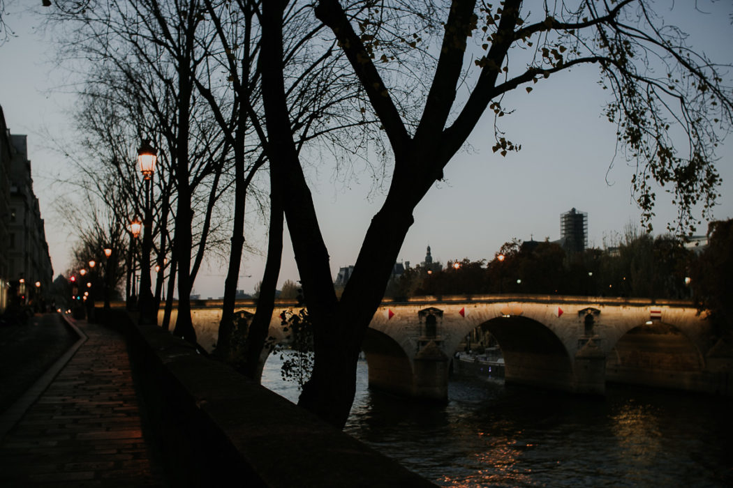 rives pont seine paris nuit