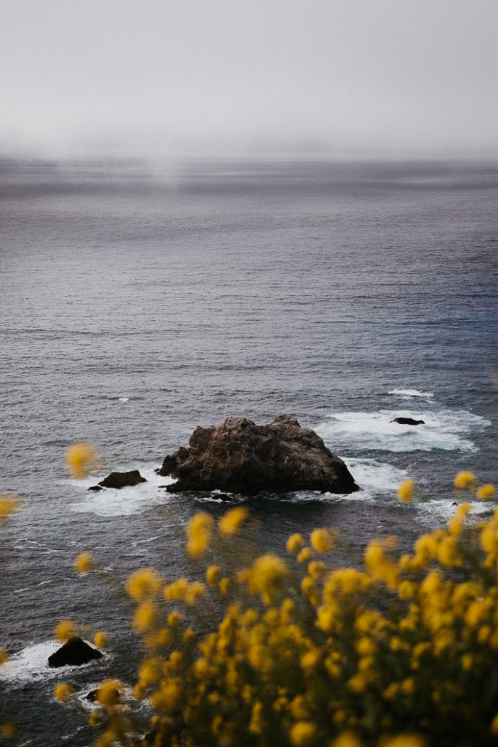 View on the pacific ocean and yellow flowers from Big Sur Coast California 2019